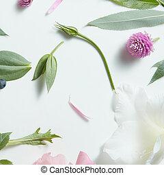 花, 重复, 任意, 白色