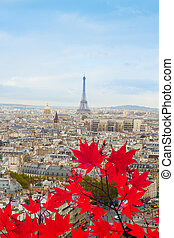 skyline of Paris with eiffel tower - skyline of Paris city...