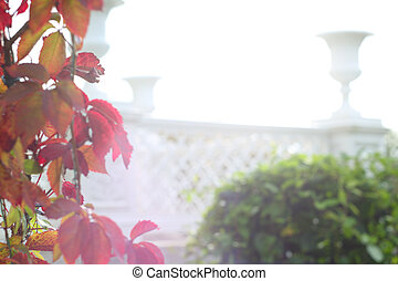 Tsaritsyn Pavilion Peterhof, Russia - Vases and autumn trees...