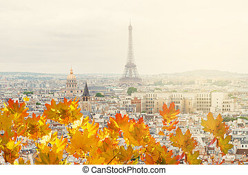 skyline of Paris with eiffel tower - skyline of Paris city...