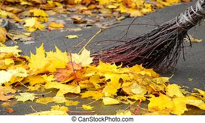 Autumn leaves on pavement and broom - Autumn leaves on the...
