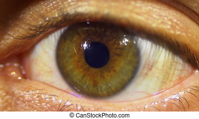 Human Eye Looks and Blinks - Human Eye Blinks. Close-up of...