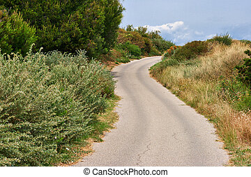 winding road in the hills