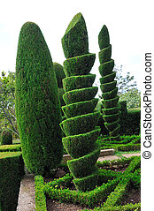 Decorative green park Botanical garden Funchal, Madeira -...