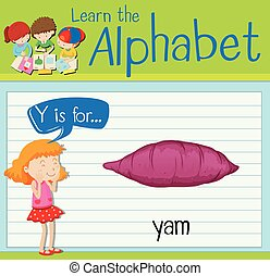 Flashcard letter Y is for yam illustration