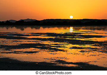 Sunset on the pond of pink flamingos in Chia, Sardinia -...