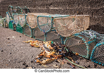 Old cage for lobster on shore in Scotland