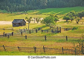 Little old shack in meadow