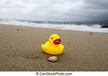 Yallow duck