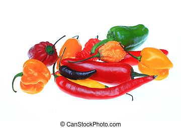 several chili pepper, Capsicum annuum