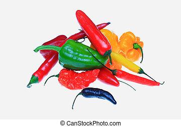 several chili pepper, Capsicum annuum
