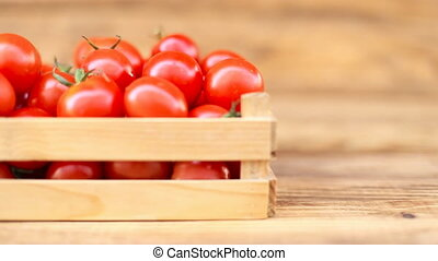 tomatoes with a small box