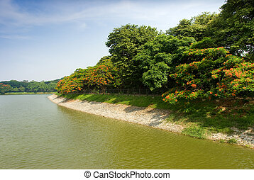 Lakeside - A view of Lal Bagh lake, Bangalore, India