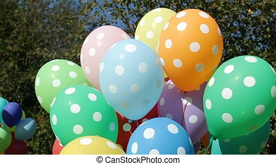 colorful inflated helium balloons polka dots in the bundle...