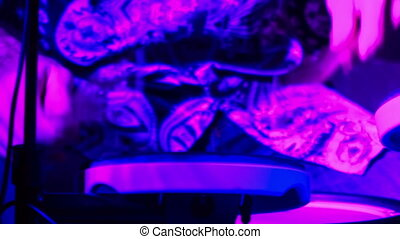 Closeup Drummer Plays in Night Bar under Light Flashes -...
