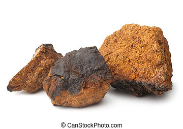 Chaga mushroom (Inonotus obliquus) on white background
