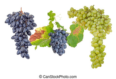 Three clusters of various table grapes on a light background...