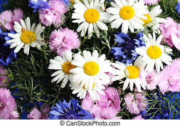 Bouquet of flowers with chamomile, close up