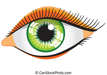 vector green woman\'s eye on a white background