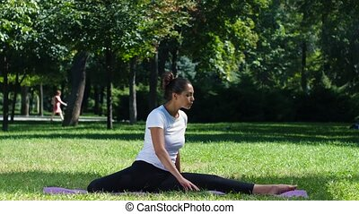 Woman doing yoga on the mat in the park - Beautiful woman...