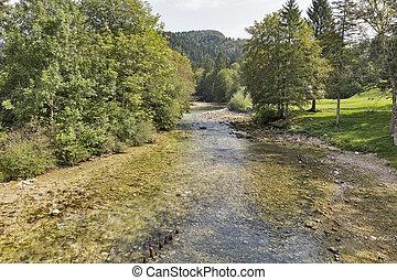 Sava Bohinjka river landscape, Slovenia - Sava Bohinjka...