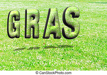 The word grass in green grass structure in 3D with shadows...