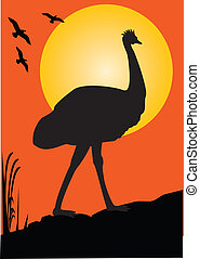 Emu Orange Sunset - one emu as a silhouette orange...