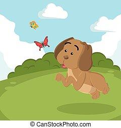 puppy chasing butterflies