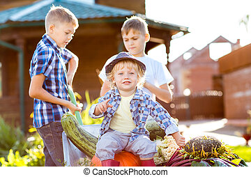jardim, crianças, trabalhando, Outono, crianças, Colher