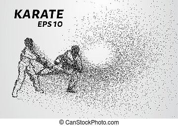Karate of particles. Sparring karate consists of small...