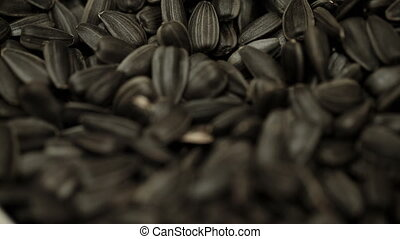 Seeds of sunflower closeup - Seeds of sunflower fried black...