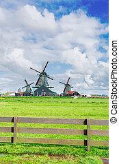 Holenderski, wiatr, młyny