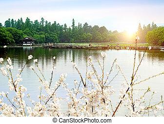 China Hangzhou West Lake landscape - Hangzhou, China, Scenic...