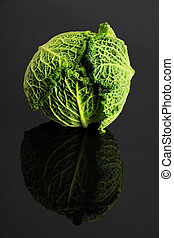Fresh Cabbage - Head of fresh cabbage over reflective table