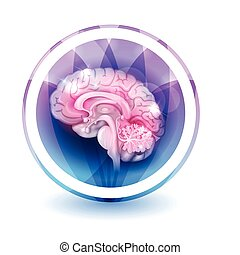 Brain sign treatment, round shape colorful overlay flower...