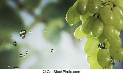 Wishihg a bunch of fresh heaithy green grapes. HD