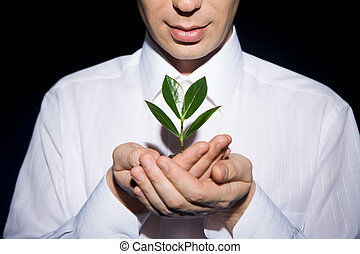 Small tree - Photo of human hands holding little sprout with...