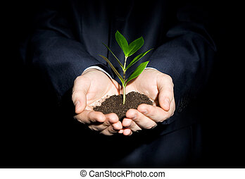 Growth - Close-up of fresh branch with leaves in soil held...