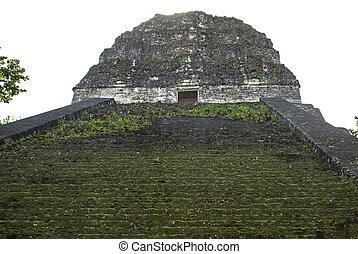 Escaleras, de, Un, Maya, templo