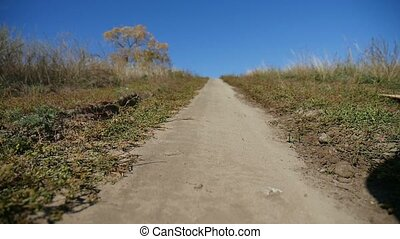 road trail in the hill lonely tree blue sky trip nature -...