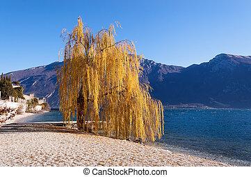 Beach in the Garda Lake - Limone sul Garda - Beach near...