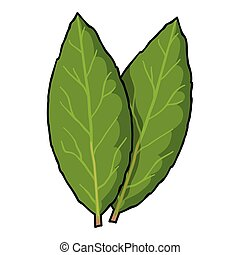 Laurus icon in cartoon style isolated on white background. Herb an spices symbol stock vector illustration.