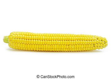 maize  - Sweet maize isolated on white background