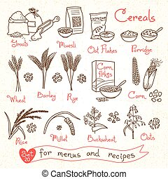 Set drawings of cereals for design menus, recipes and...