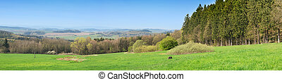 Sumava - Panoramic view of the Sumava National Park. Czech...
