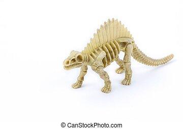 Dimetrodon dinosaur skeleton on a white background