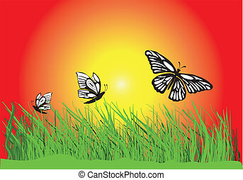 grass flower and butterfly
