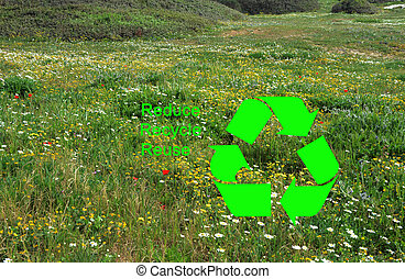 How to protect environment:Reduce,Recycle,Reuse