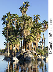 Palm Island, Encanto Park Lake, Phoenix, AZ - Palm Island of...