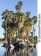 Palm Island, Encanto Park Lake, Phoenix, AZ